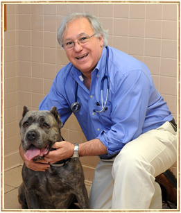Hickville Veterinarian